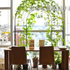Botanical Treatment Salon&Cafe FoRest